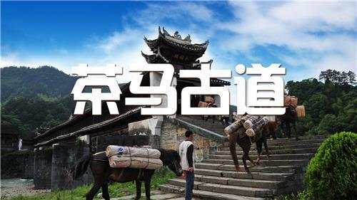 徒步团建 茶马古道文化体验之旅